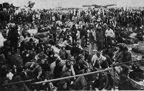 Isle of Wight Festival 1968 Crowd